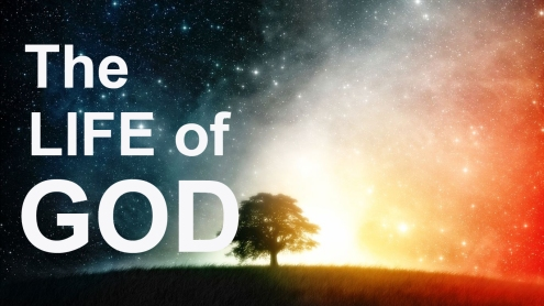 the-life-of-god